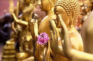Đức Phật có thể cứu rỗi chúng sinh thoát khỏi dịch COVID-19 hay không?