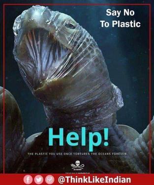 Môi trường ngày càng ô nhiễm, động vật ngày càng ''khốn khổ''!!!