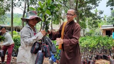 Chùa Bửu Đà: hỗ trợ cây giống cho đồng bào dân tộc tại Nam Trà My (Quảng Nam)