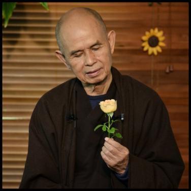 Thiền sư Thích Nhất Hạnh chia sẻ thêm về 'Bông hồng cài áo'
