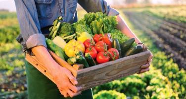 8 dấu hiệu cơ thể thiếu rau xanh