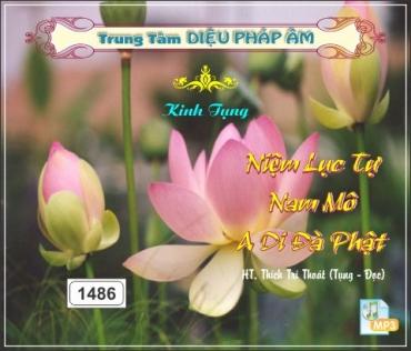 Niệm Lục Tự Nam Mô A Di Đà Phật - Thầy Trí Thoát