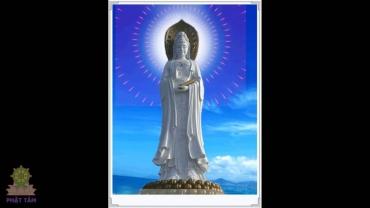 Nhạc Niệm Phật 'Quán Thế Âm Bồ Tát' Vol.02
