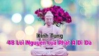 48 Lời Nguyện Đức Phật A Di Đà - Thầy Pháp Hòa