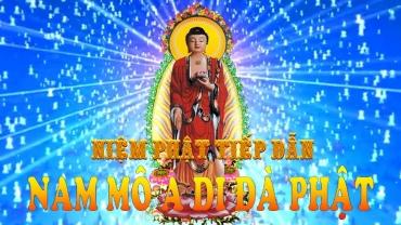Nam Mô Tiếp Dẫn Đạo Sư A Di Đà Phật - TT. Thích Lệ Trang niệm